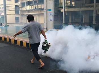 Building Department takes care of the spray to kill mosquitoes and insects.