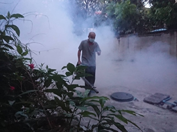 Smoke spray kill mosquitoes and insects inside the school grounds.